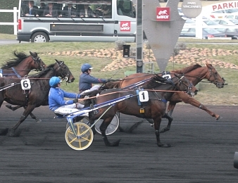 Royal Dream dominateur dans le Prix de France 2012