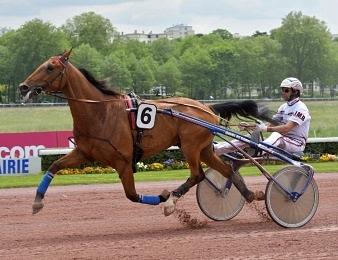 Aubrion du Gers remporte le Prix des Ducs de Normandie