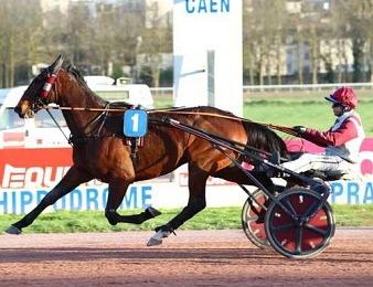 Bugsy Malone remporte le quinté du jour sur l'hippodrome d'Angers.