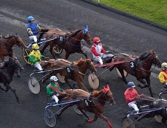 Douze concurrents ont rendez-vous dans le Tiercé, Quarté, Quinté du jour