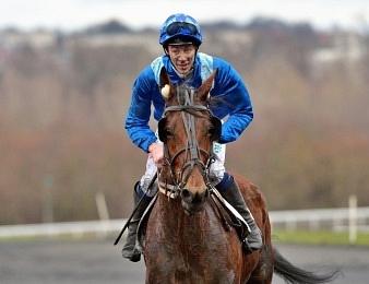 Evangelina Blue triomphe