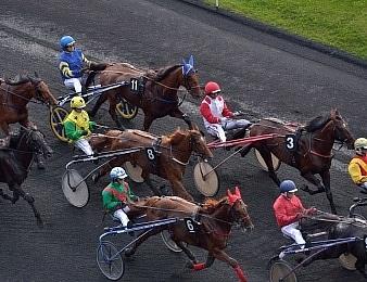 Le Grand Prix Angers Loire Métropole, quinté + PMU du mercredi 7 avril.