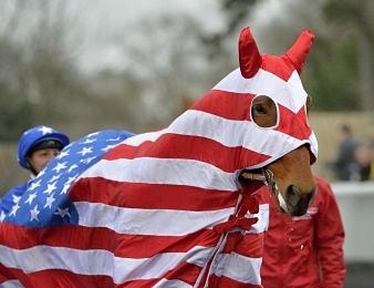 Le Grand Prix d'Amérique a lieu chaque dernier dimanche du mois de janvier