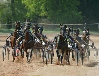 Le Prix de la Ville de Pont-Château, quinté + PMU du mercredi 18 avril
