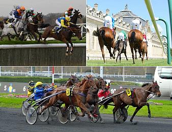 Olmedo termine en tête du meilleur classement des chevaux de cette semaine