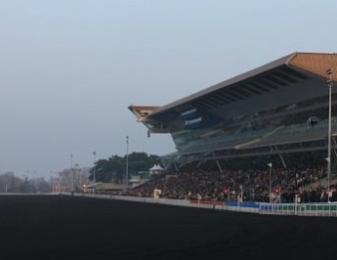 Pomerol de Laumac a aussi profité des nombreux incidents de course