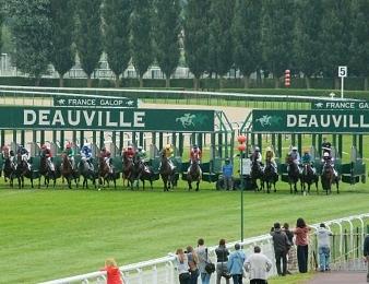 Quatorze concurrents ont rendez-vous dans le Tiercé, Quarté, Quinté du jour
