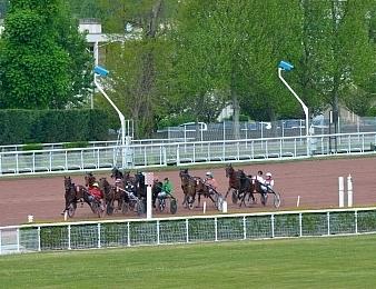 Quinze concurrentes prendront part au Tiercé, Quarté, Quinté plus de ce jour