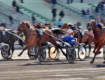 Trois courses de Groupe 1 ont lieu ce vendredi 12 octobre à Vincennes
