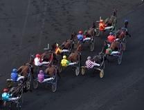 Quinté plus PMU : c'est la course de Violetto Jet - Quinté+ - zone-turf.fr