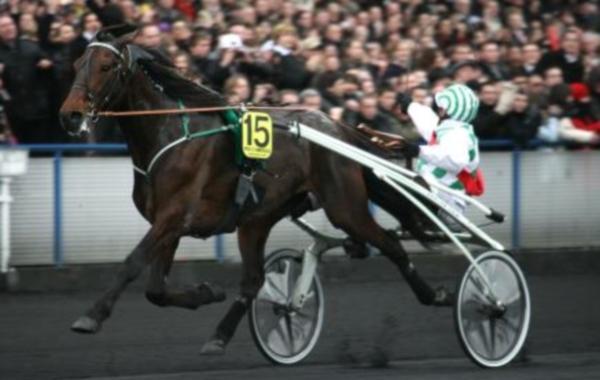 Meaulnes du Corta, vainqueur du Prix d'Amérique 2009