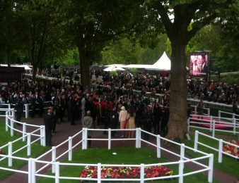 Rond de présentation Longchamp
